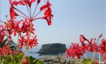 La più grande Isola della Calabria: ISOLA di DINO